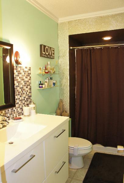 Bramex painting Bathroom remodel durham nc